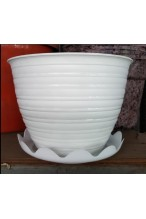 Pot bunga tawon putih 24 + tatakan